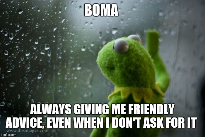 kermit window | BOMA ALWAYS GIVING ME FRIENDLY ADVICE, EVEN WHEN I DON'T ASK FOR IT | image tagged in kermit window | made w/ Imgflip meme maker