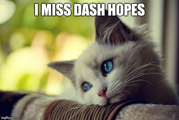 First World Problems Cat Meme | I MISS DASH HOPES | image tagged in memes,first world problems cat | made w/ Imgflip meme maker