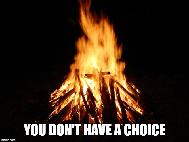campfire | YOU DON'T HAVE A CHOICE | image tagged in campfire | made w/ Imgflip meme maker