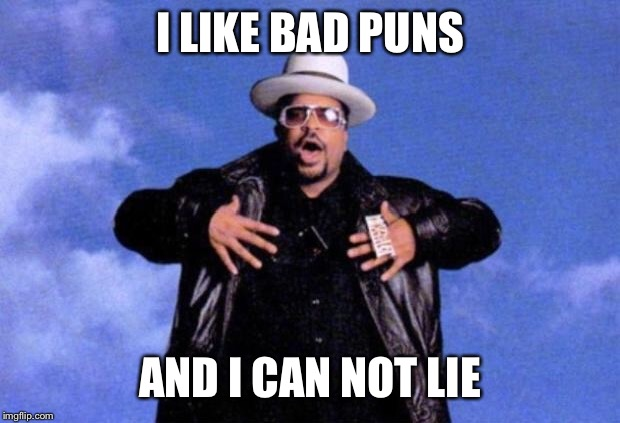 sir mix a lot | I LIKE BAD PUNS AND I CAN NOT LIE | image tagged in sir mix a lot | made w/ Imgflip meme maker