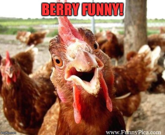 Chicken | BERRY FUNNY! | image tagged in chicken | made w/ Imgflip meme maker