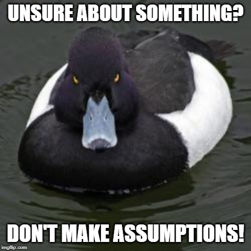 Angry Advice Mallard | UNSURE ABOUT SOMETHING? DON'T MAKE ASSUMPTIONS! | image tagged in angry advice mallard | made w/ Imgflip meme maker
