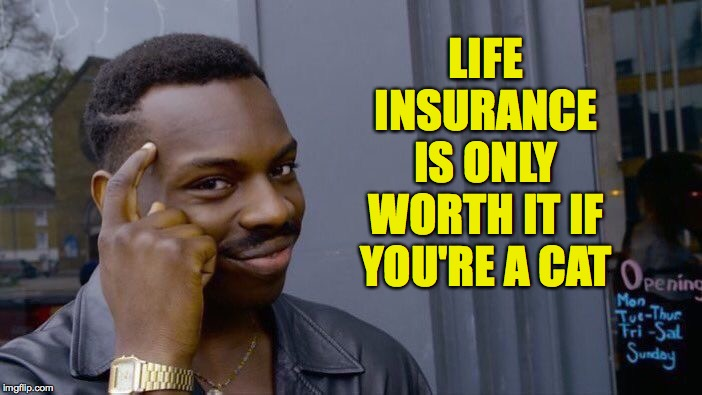 If I'm not paying for car insurance, I'm sure not paying for life insurance! | LIFE INSURANCE IS ONLY WORTH IT IF YOU'RE A CAT | image tagged in memes,roll safe think about it,life insurance,meow | made w/ Imgflip meme maker