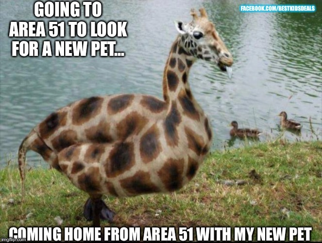 image tagged in area 51,ancient aliens,aliens,ducks,giraffe,dinosaur | made w/ Imgflip meme maker