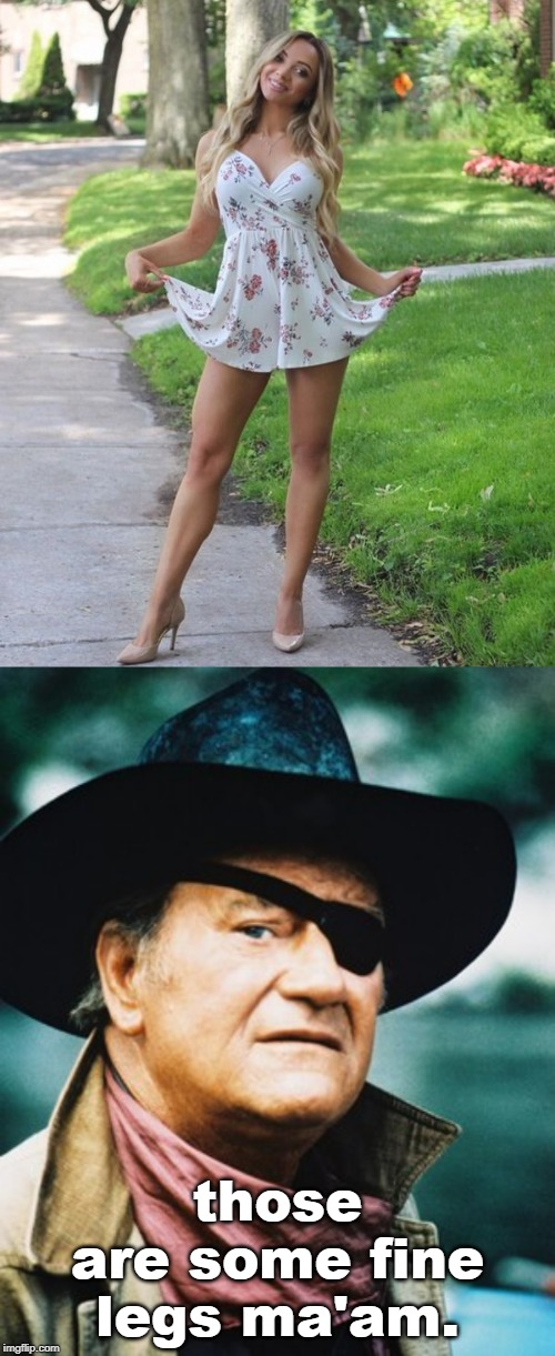 surely is the time to wear a sundress and show off those great legs, girls !! legsetc imgflip stream | those are some fine legs ma'am. | image tagged in pretty girl,sexy legs,men vs women,legsetc,meme | made w/ Imgflip meme maker