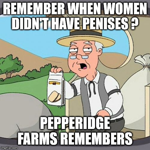 Pepperidge Farm Remembers Meme | REMEMBER WHEN WOMEN DIDN'T HAVE P**ISES ? PEPPERIDGE FARMS REMEMBERS | image tagged in memes,pepperidge farm remembers | made w/ Imgflip meme maker