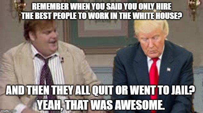 Hey, do you? | REMEMBER WHEN YOU SAID YOU ONLY HIRE THE BEST PEOPLE TO WORK IN THE WHITE HOUSE? AND THEN THEY ALL QUIT OR WENT TO JAIL? YEAH, THAT WAS AWES | image tagged in donald trump,awesome chris farley,conservative logic | made w/ Imgflip meme maker