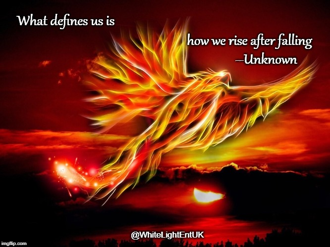 After The Fall | What defines us is how we rise after falling            --Unknown @WhiteLightEntUK | image tagged in rise up,strength,success,determination,reaction,action | made w/ Imgflip meme maker