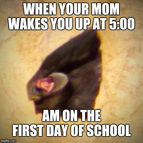 I can connect | WHEN YOUR MOM WAKES YOU UP AT 5:00 AM ON THE FIRST DAY OF SCHOOL | image tagged in sleepy,first day of school,moms,relateable,gorilla,zoo | made w/ Imgflip meme maker