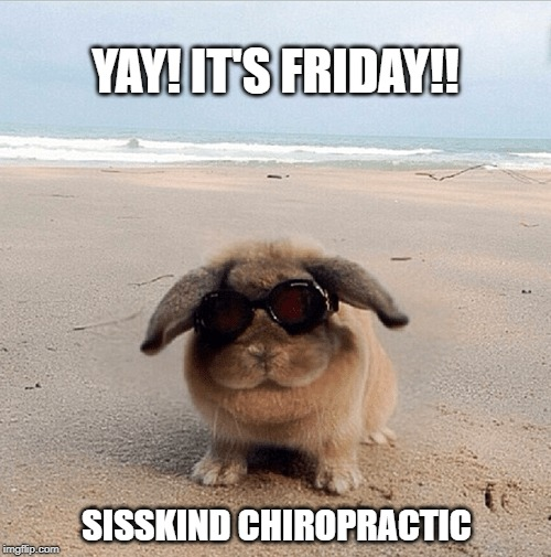 Yay! It's Friday!! | YAY! IT'S FRIDAY!! SISSKIND CHIROPRACTIC | image tagged in yay it's friday | made w/ Imgflip meme maker