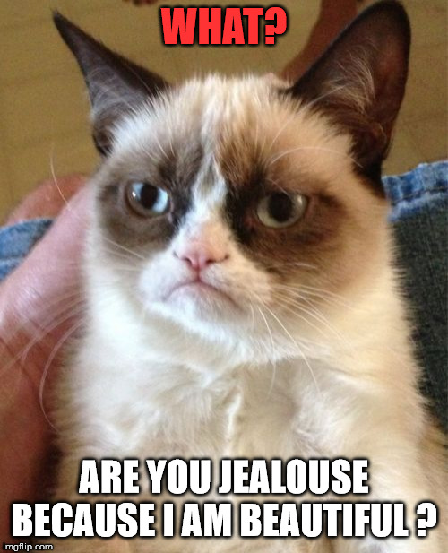 Grumpy Cat | WHAT? ARE YOU JEALOUSE BECAUSE I AM BEAUTIFUL ? | image tagged in memes,grumpy cat | made w/ Imgflip meme maker