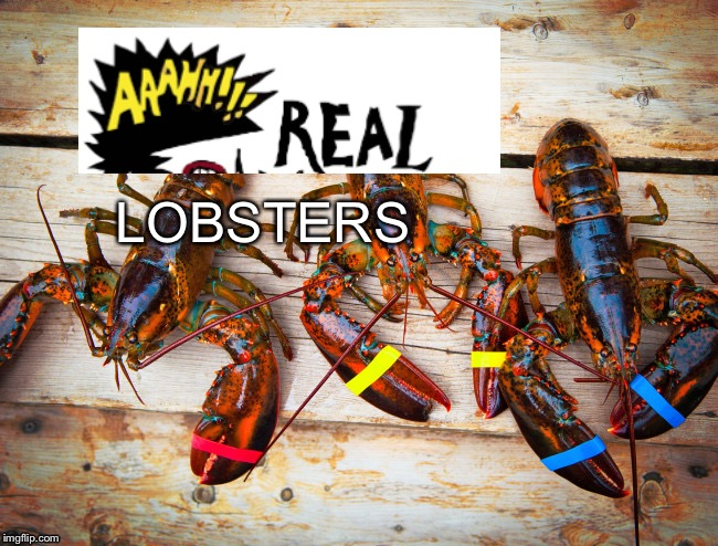 LOBSTERS | image tagged in real,monsters,ah real monsters | made w/ Imgflip meme maker