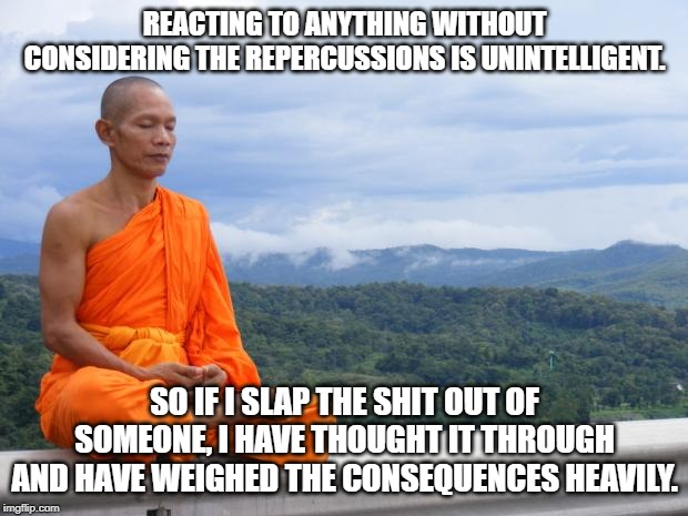 Tibetan monk | REACTING TO ANYTHING WITHOUT CONSIDERING THE REPERCUSSIONS IS UNINTELLIGENT. SO IF I SLAP THE SHIT OUT OF SOMEONE, I HAVE THOUGHT IT THROUGH | image tagged in tibetan monk | made w/ Imgflip meme maker