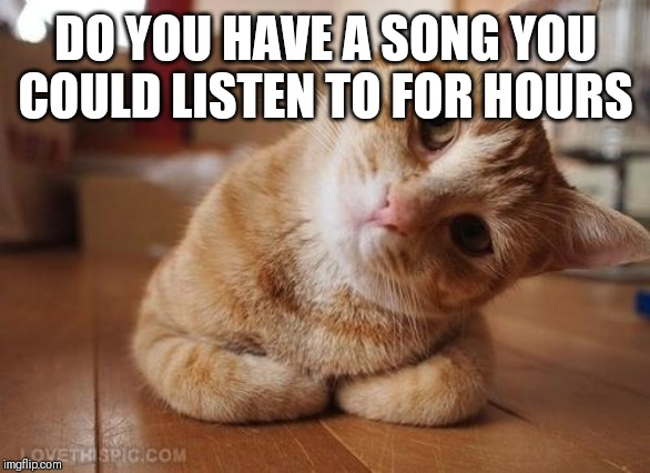 We all got our favorites! | DO YOU HAVE A SONG YOU COULD LISTEN TO FOR HOURS | image tagged in curious question cat | made w/ Imgflip meme maker