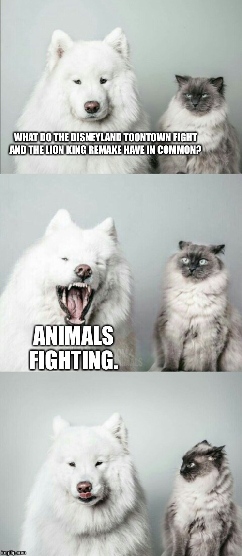 This joke might be offensive to cats |  WHAT DO THE DISNEYLAND TOONTOWN FIGHT AND THE LION KING REMAKE HAVE IN COMMON? ANIMALS FIGHTING. | image tagged in bad joke dog cat,memes,the lion king,disney,fight,animal | made w/ Imgflip meme maker