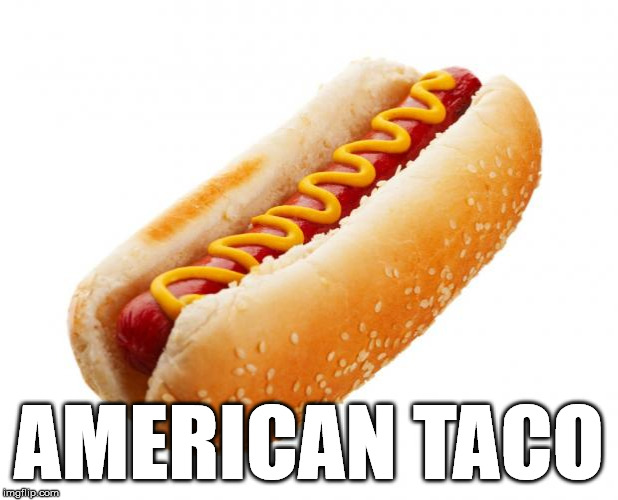 Trust me, I'm an expert | AMERICAN TACO | image tagged in hot dog,americana,alternate names for everyday things,funny,memes,taco | made w/ Imgflip meme maker