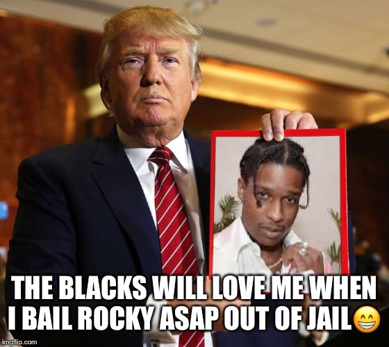 Stable Genius Idea | THE BLACKS WILL LOVE ME WHEN I BAIL ROCKY ASAP OUT OF JAIL? | image tagged in asap rocky,donald trump,satire,trump campaign,stable genius | made w/ Imgflip meme maker