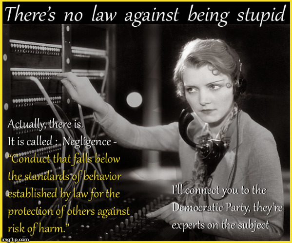 No law against being stupid | image tagged in no law against being stupid,stupid people,lol so funny,lol,funny memes,vintage | made w/ Imgflip meme maker