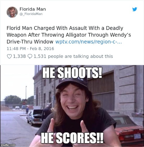 Later Gator!........Come Make Gold Like this in the Headlines Thread! (Link in Comments) | image tagged in alligator,florida man | made w/ Imgflip meme maker