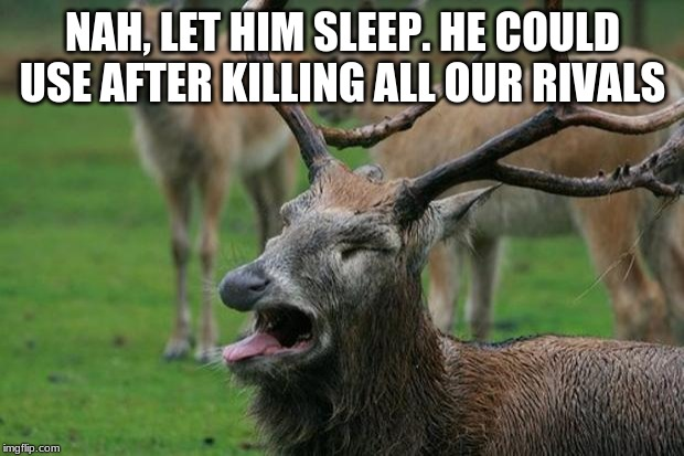 Disgusted Deer | NAH, LET HIM SLEEP. HE COULD USE AFTER KILLING ALL OUR RIVALS | image tagged in disgusted deer | made w/ Imgflip meme maker