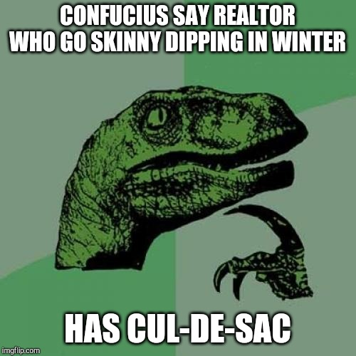 Philosoraptor | CONFUCIUS SAY REALTOR WHO GO SKINNY DIPPING IN WINTER HAS CUL-DE-SAC | image tagged in memes,philosoraptor | made w/ Imgflip meme maker