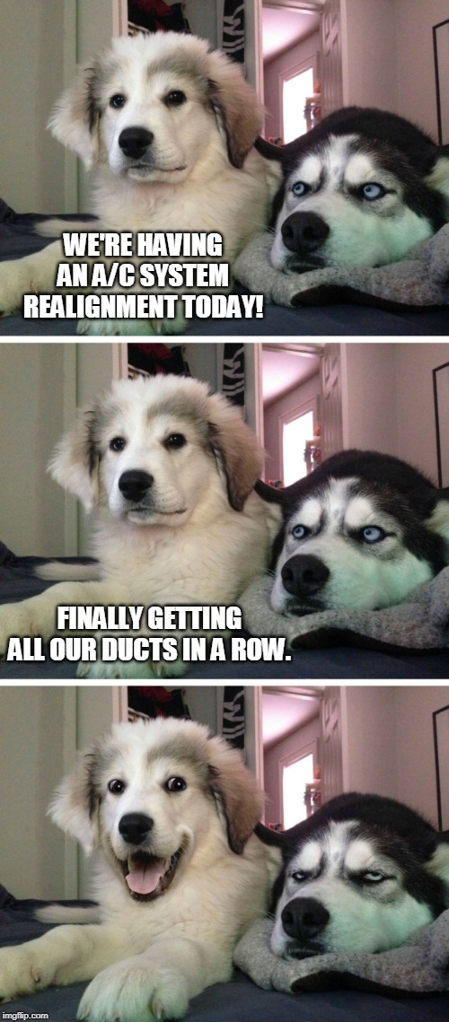 Dog jokes | WE'RE HAVING AN A/C SYSTEM REALIGNMENT TODAY! FINALLY GETTING ALL OUR DUCTS IN A ROW. | image tagged in dog jokes | made w/ Imgflip meme maker