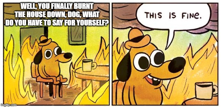 This Is Fine |  WELL, YOU FINALLY BURNT THE HOUSE DOWN, DOG, WHAT DO YOU HAVE TO SAY FOR YOURSELF? | image tagged in this is fine dog | made w/ Imgflip meme maker