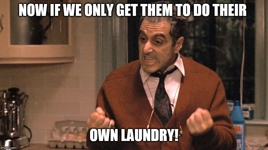 They pull me back in Godfather | NOW IF WE ONLY GET THEM TO DO THEIR OWN LAUNDRY! | image tagged in they pull me back in godfather | made w/ Imgflip meme maker