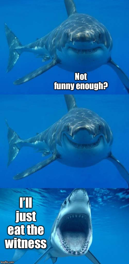 Bad Shark Pun  | Not funny enough? I'll just eat the witness | image tagged in bad shark pun | made w/ Imgflip meme maker