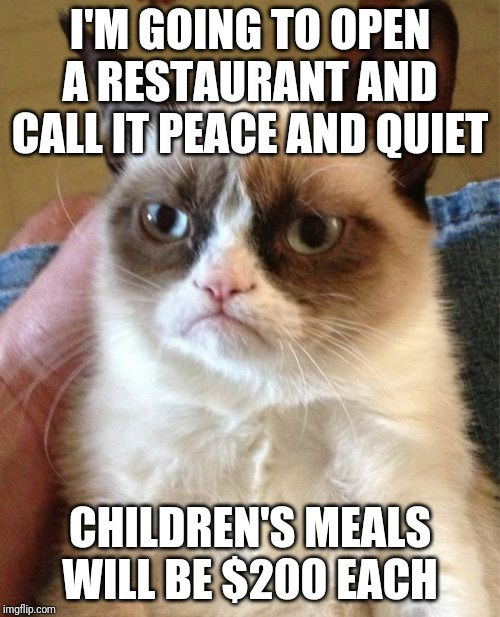 Grumpy Cat | I'M GOING TO OPEN A RESTAURANT AND CALL IT PEACE AND QUIET CHILDREN'S MEALS WILL BE $200 EACH | image tagged in memes,grumpy cat | made w/ Imgflip meme maker