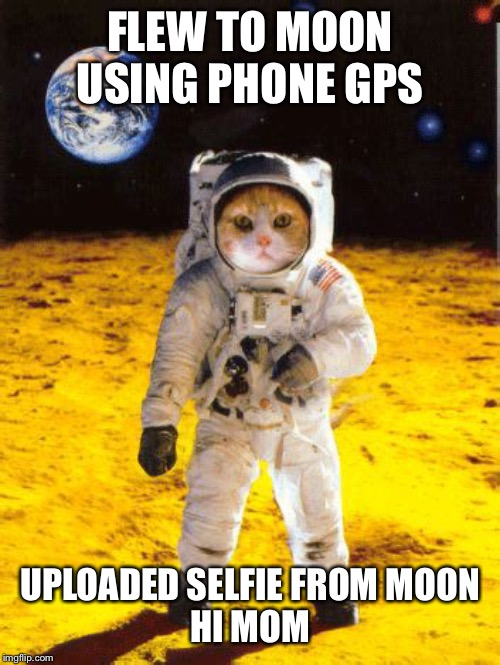 First cat on the moon | FLEW TO MOON USING PHONE GPS UPLOADED SELFIE FROM MOON HI MOM | image tagged in first cat on the moon | made w/ Imgflip meme maker