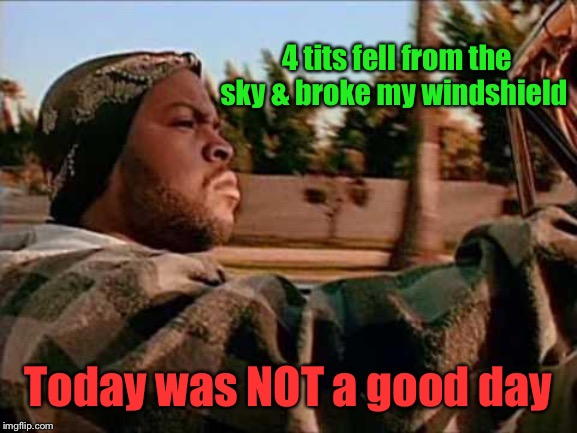 Today Was A Good Day Meme | 4 tits fell from the sky & broke my windshield Today was NOT a good day | image tagged in memes,today was a good day | made w/ Imgflip meme maker