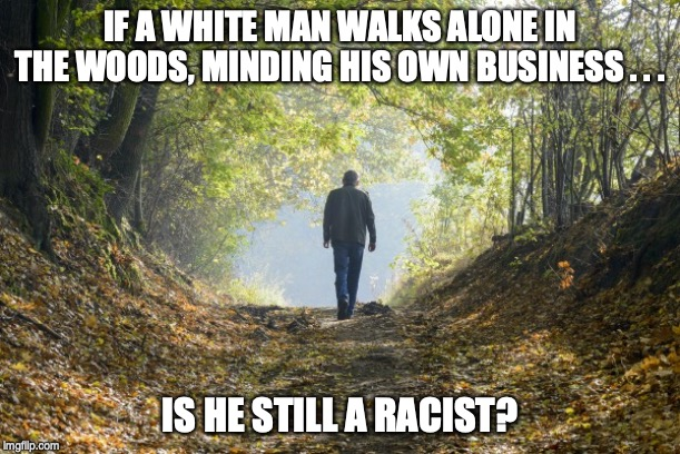 IF A WHITE MAN WALKS ALONE IN THE WOODS, MINDING HIS OWN BUSINESS . . . IS HE STILL A RACIST? | image tagged in woke,sjw | made w/ Imgflip meme maker
