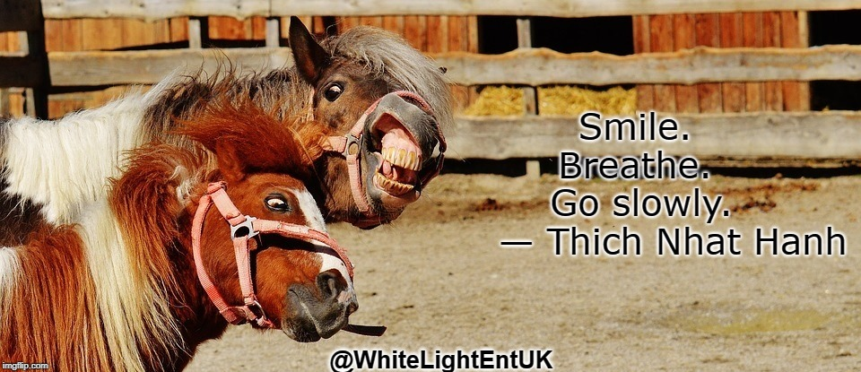 Smile | Smile. Breathe. Go slowly.     — Thich Nhat Hanh @WhiteLightEntUK | image tagged in zen,humor,fun,breathe,enjoy,play | made w/ Imgflip meme maker