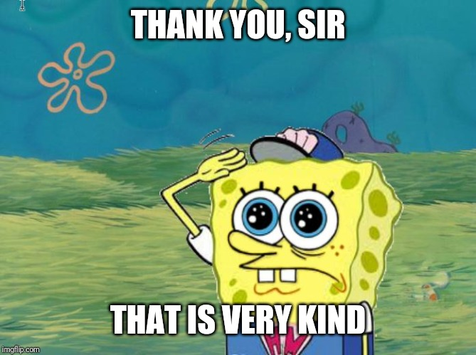Spongebob salute | THANK YOU, SIR THAT IS VERY KIND | image tagged in spongebob salute | made w/ Imgflip meme maker