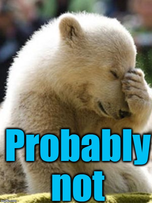 Facepalm Bear Meme | Probably not | image tagged in memes,facepalm bear | made w/ Imgflip meme maker