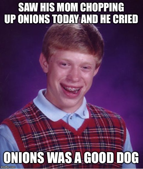 Guess it made a dogs dinner of Brian's day | SAW HIS MOM CHOPPING UP ONIONS TODAY AND HE CRIED ONIONS WAS A GOOD DOG | image tagged in memes,bad luck brian,this onion won't make me cry,what if i told you,onions,died | made w/ Imgflip meme maker