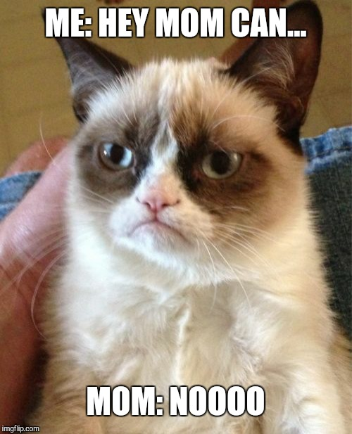 Grumpy Cat | ME: HEY MOM CAN... MOM: NOOOO | image tagged in memes,grumpy cat | made w/ Imgflip meme maker