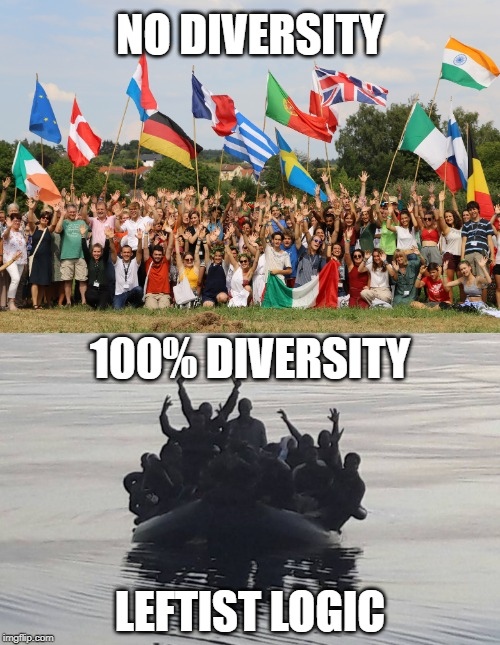 Remember kids, diversity is our strength. | NO DIVERSITY 100% DIVERSITY LEFTIST LOGIC | image tagged in diversity,social justice,illegal immigration,race | made w/ Imgflip meme maker