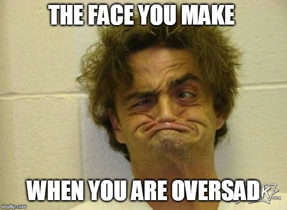 LEL | THE FACE YOU MAKE WHEN YOU ARE OVERSAD | image tagged in sadness,cringe | made w/ Imgflip meme maker