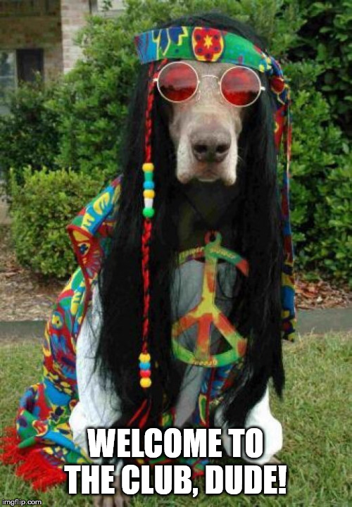 Hippie dog  | WELCOME TO THE CLUB, DUDE! | image tagged in hippie dog | made w/ Imgflip meme maker