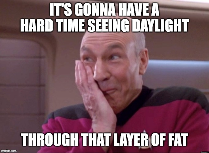 Naughty Picard | IT'S GONNA HAVE A HARD TIME SEEING DAYLIGHT THROUGH THAT LAYER OF FAT | image tagged in naughty picard | made w/ Imgflip meme maker