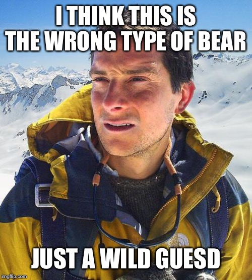 I THINK THIS IS THE WRONG TYPE OF BEAR JUST A WILD GUESD | image tagged in memes,bear grylls | made w/ Imgflip meme maker
