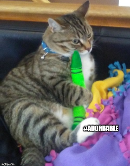 IF U LOVE MY CAT GIVE HIM AN UPVOTE GOSHDANGIT. | #ADORBABLE | image tagged in cats,crayons,so cute,lol | made w/ Imgflip meme maker