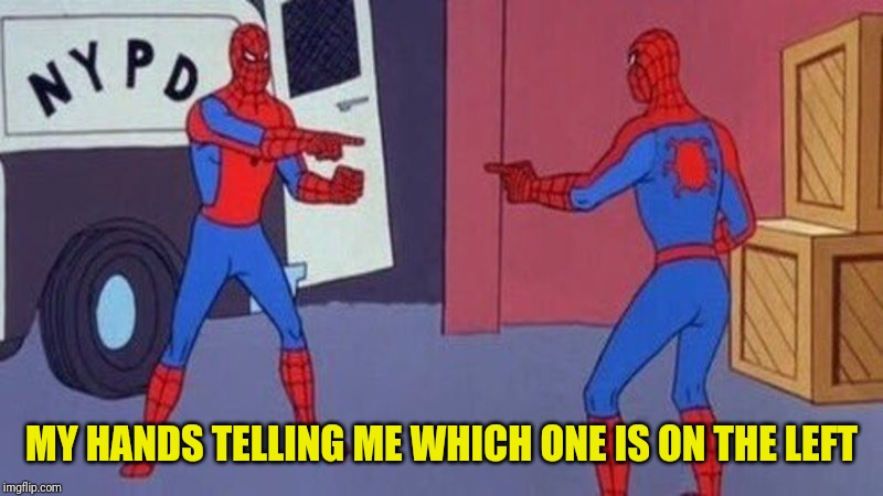 Left and Left | MY HANDS TELLING ME WHICH ONE IS ON THE LEFT | image tagged in spiderman pointing at spiderman | made w/ Imgflip meme maker