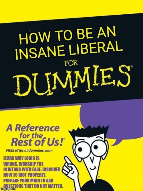 I believe this might be true. Insanity and politics should never mix! |  HOW TO BE AN INSANE LIBERAL; LEARN WHY LOGIC IS WRONG. WORSHIP THE CLINTONS WITH EASE. DISCOVER HOW TO RIOT PROPERLY. PREPARE YOUR MIND TO ASK QUESTIONS THAT DO NOT MATTER. | image tagged in for dummies book | made w/ Imgflip meme maker