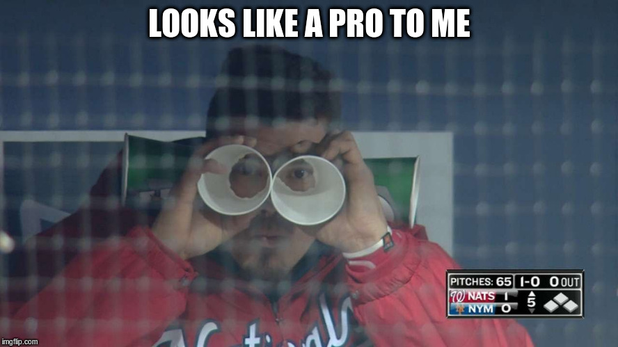LOOKS LIKE A PRO TO ME | made w/ Imgflip meme maker