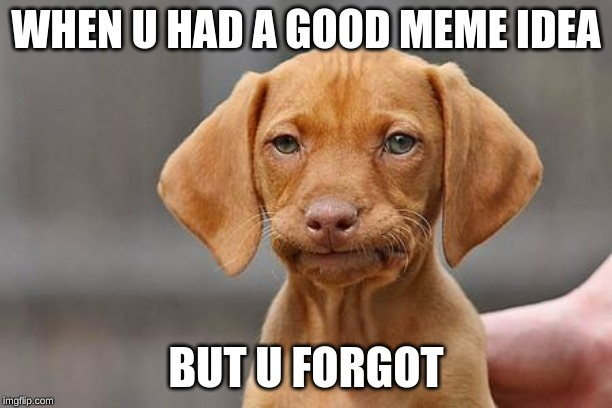 bruh |  WHEN U HAD A GOOD MEME IDEA; BUT U FORGOT | image tagged in dissapointed puppy | made w/ Imgflip meme maker