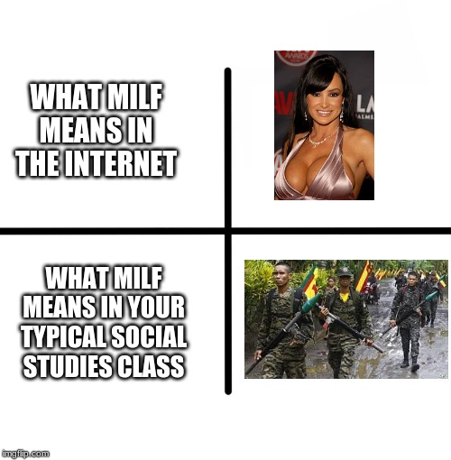 Boobs?,Terrorism? Or A Usual Joke? Is This Confusing? | WHAT MILF MEANS IN THE INTERNET WHAT MILF MEANS IN YOUR TYPICAL SOCIAL STUDIES CLASS | image tagged in memes,blank starter pack,milf,philippines,terrorism | made w/ Imgflip meme maker