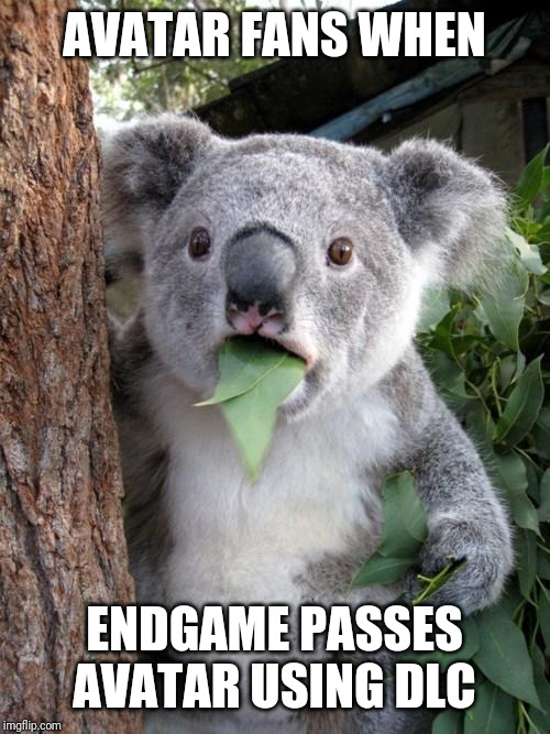 Endgame finally passing avatar in the box office | AVATAR FANS WHEN ENDGAME PASSES AVATAR USING DLC | image tagged in memes,surprised koala,avengers endgame,avengers,avatar | made w/ Imgflip meme maker